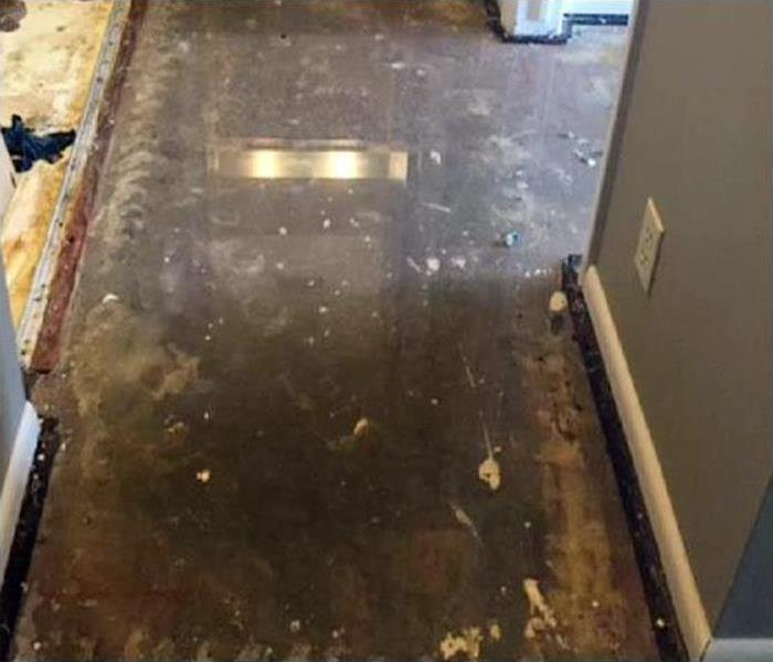 Carpet removal and drying after home flood
